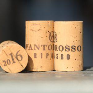 Valgatara Valpolicella Vantorosso Vanni Pasquali Wijnhandel Valgatara Belgie 24