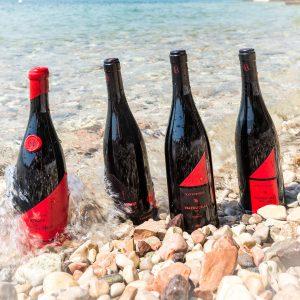 Valgatara Valpolicella Vantorosso Vanni Pasquali Wijnhandel Valgatara Belgie 36