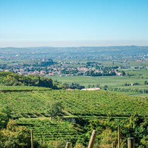 Valgatara Valpolicella Vantorosso Vanni Pasquali Wijnhandel Valgatara Belgie 55