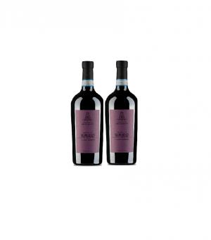 2 x Ripasso Bonazzi Valpolicella winepack Wijnhandel Valgatara Belgie