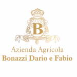 Logo-Bonazzi-oro valgatara valpolicella wijnhandel