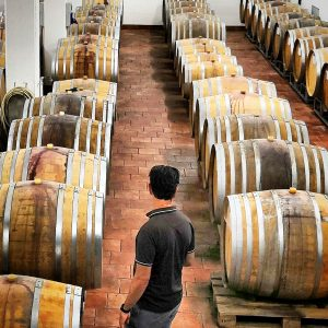 Wijnhandel Valgatara Wijnen van Valpolicella Classico Ripasso Amarone 4