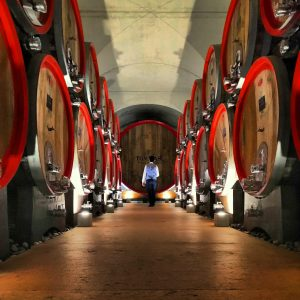 Wijnhandel Valgatara Wijnen van Valpolicella Classico Ripasso Amarone 6
