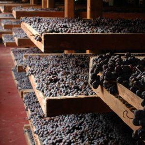 Wijnhandel Valgatara Speri amarone