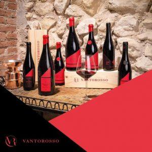Wijnen uit Valpolicella bij Wijnhandel VALGATARA BELGIE 26